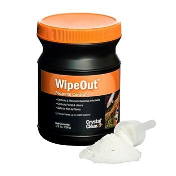 CC131-8-WipeOut