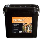 CC158-20-ParaSalt