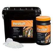 CC158-ParaSalt