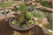 "Aquascape Aquatic Patio Pond- 32"" European Terra Cotta"