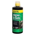 CC073-32-Algae-D-Solv
