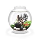 biOrb Classic 15 Aquarium with Multicolor Remote Control