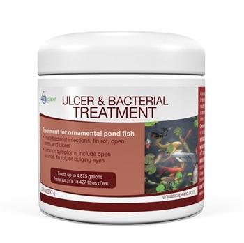 81038-Ulcer-Bacteri...-Treatment