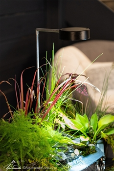 Aquascape AquaGarden Plant Light