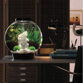biOrb Classic 30 Aquarium- 8 gallon