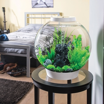 biOrb Classic 60 Aquarium- 16 gallon