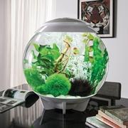 biOrb HALO 60 Aquarium with MCR