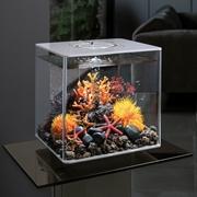 biOrb CUBE 30 Aquarium with MCR