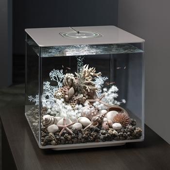 biOrb Cube 60 Aquarium with MCR