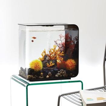 biOrb FLOW 30 Aquarium