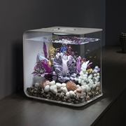 biOrb Flow 30 Aquarium with MCR